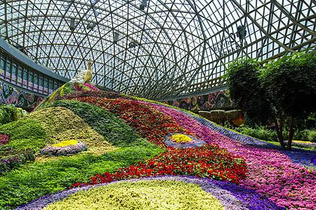 亚洲最大花卉温室图片