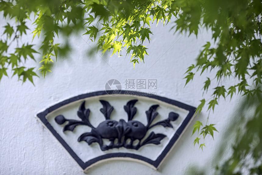 中国风的枫叶图片