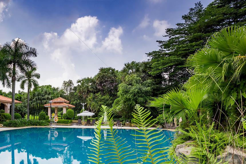 三亚酒店花园风景图片