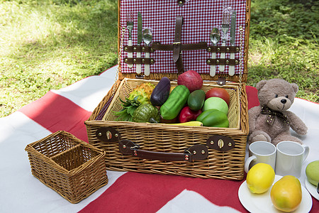 户外野餐水果玩具图片