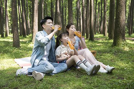 一家人树林里聚餐图片