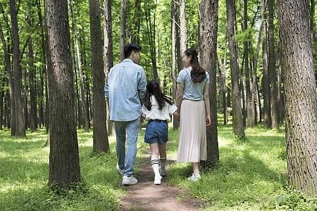 一家人在树林中散步图片
