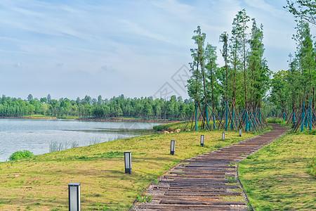 湖边适合散步的小路图片