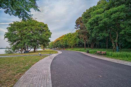 小区湖边适合散步的道路图片