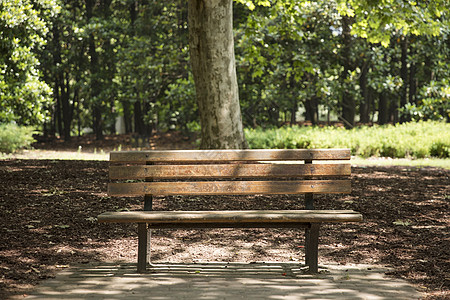 公园里的椅子图片