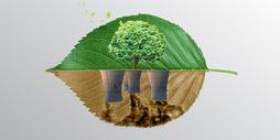 工厂环境污染图片