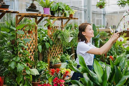 校园写真女生花园内拍照图片