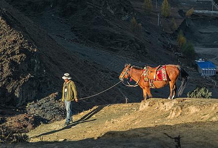 山坡上的牵马人图片