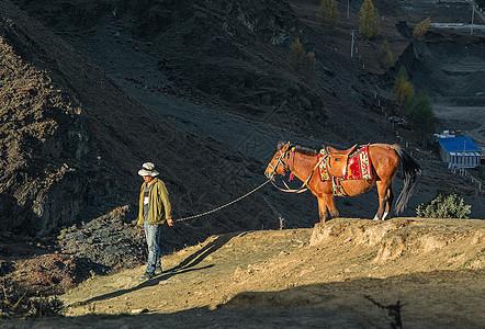 山坡上牵马图片