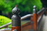 中国风庭院设计图片
