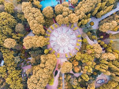俯瞰城市的秋天图片