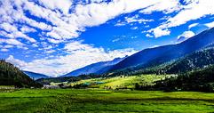 西藏林芝鲁朗自然风光图片
