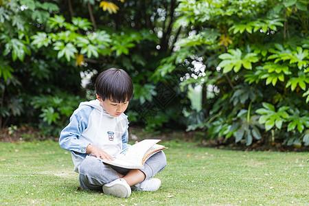 可爱儿童草地上看书图片