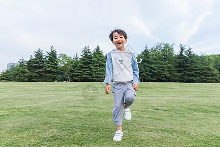 可爱儿童在草地游玩图片