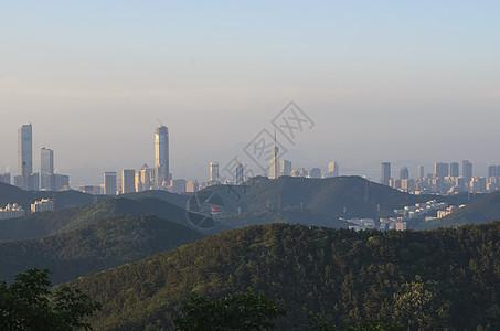 鸟瞰大连城市中心图片