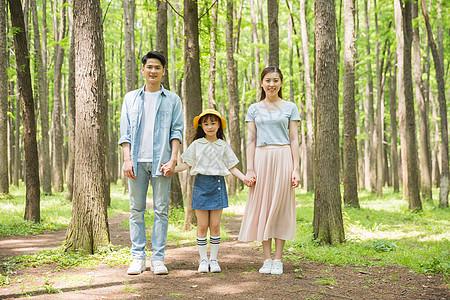 一家人牵手站在森林里图片