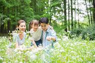 一家人花丛中欣赏图片
