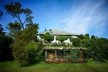 斯里兰卡茶园花园图片