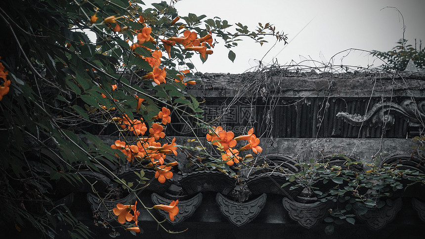 千灯古镇古式建筑图片