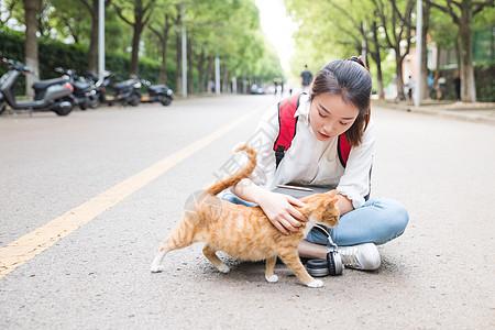 毕业季青春学生和猫图片