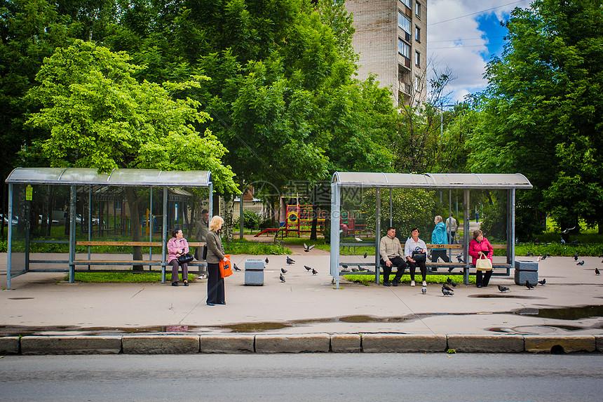 俄罗斯圣彼得堡街道上车站与鸽群图片