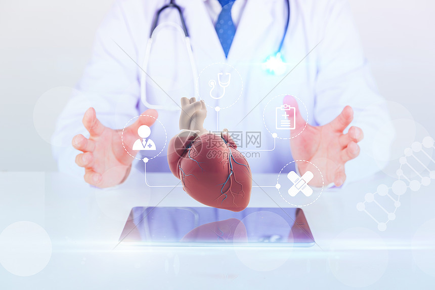 心脏器官保护图片