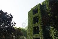 秦皇岛燕山大学校园图片