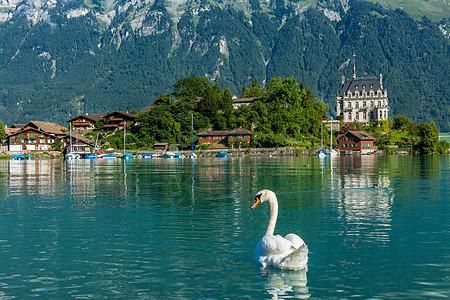 湖光山色瑞士自然风光图片