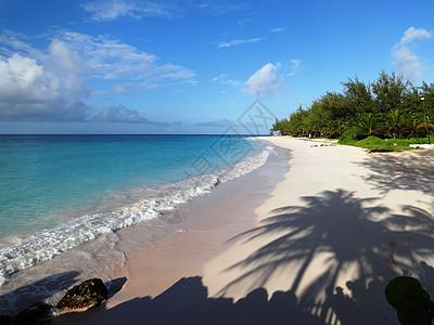 美丽沙滩空无一人等你来图片