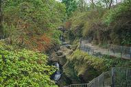 尼泊尔著名景区景点大卫瀑布图片