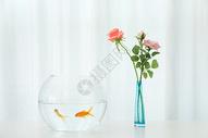 桌子上的金鱼与花束图片
