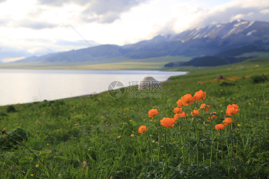 赛里木湖图片