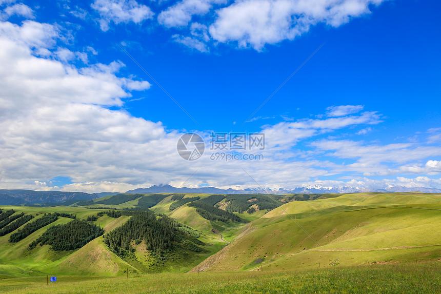 夏季草原风光图片