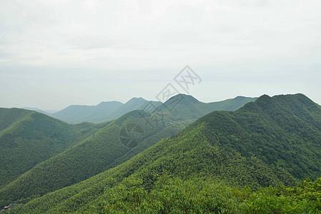 南山竹海图片