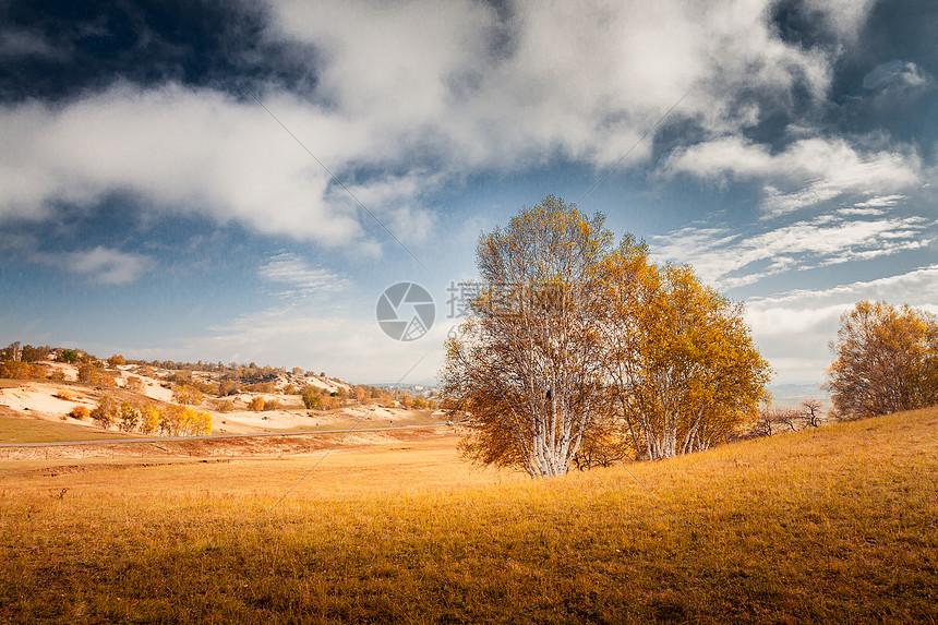 蓝天白云下秋季内蒙古坝上乌兰布统草场图片