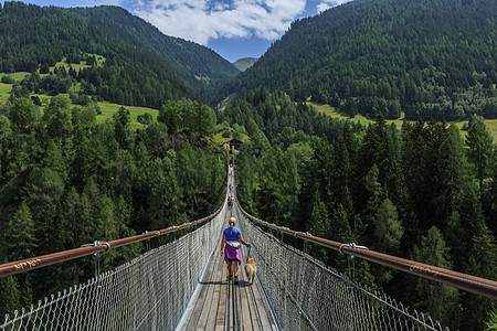 瑞士阿尔卑斯山区吊桥图片