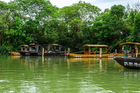 白天杭州西溪湿地洪园游船图片