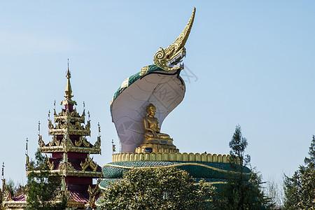 缅甸佛殿前的蛇形佛像图片