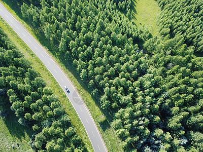 航拍乌兰布统森林公路图片