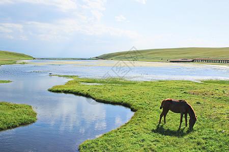 新疆巴音布鲁克草原图片