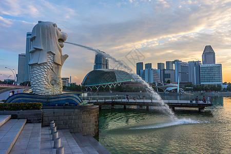 新加坡鱼尾狮公园图片