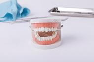 保护牙齿图片