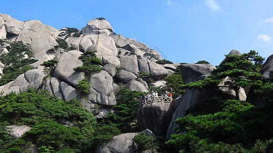 天柱山风光岩缝出青松图片