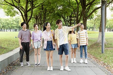 学生林间散步图片