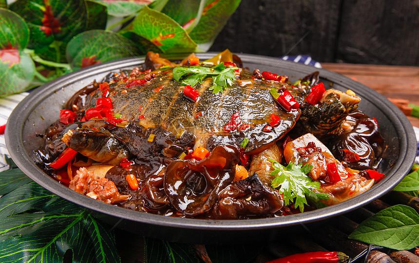 红烧香辣甲鱼图片