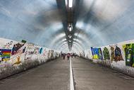 厦门大学芙蓉隧道图片