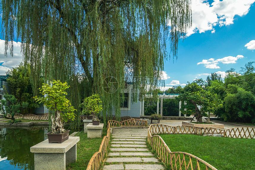 北京植物园景色图片