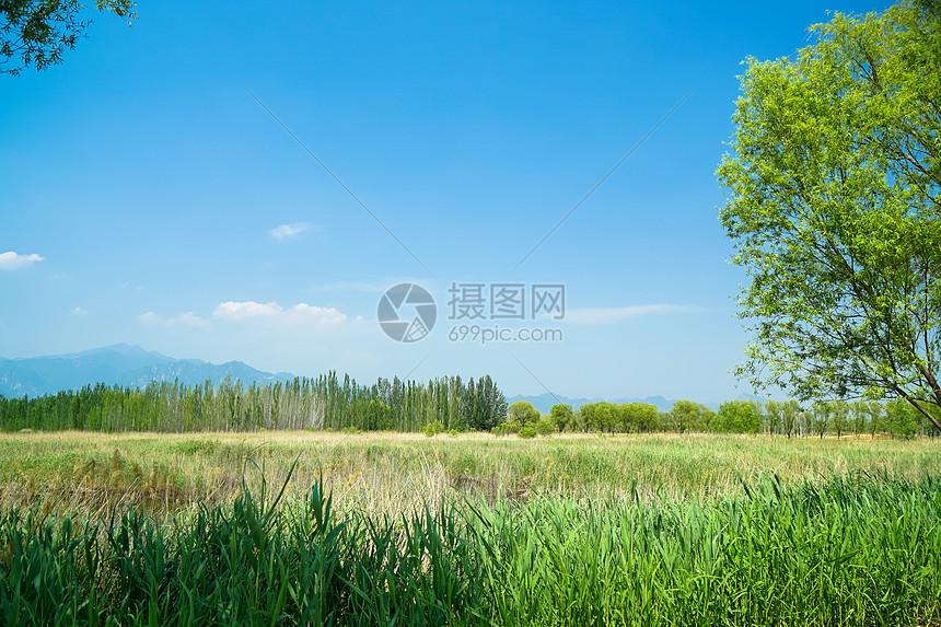 蓝天白云的田园风光图片