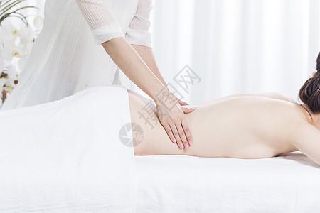 美容养生spa背部按摩图片