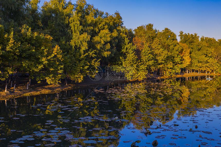 奥林匹克森林公园的秋色湖面图片
